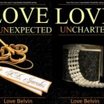 Book Review: Love's Improbable Possibility Series